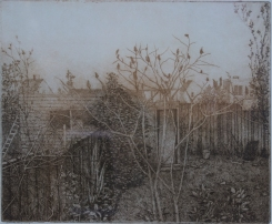 Backyard by Gillian Pederson Krag, Etching 9.25 x 11.25 - SOLD, More available upon request