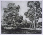 "Landscape, Gillian Pederson-Krag, Etching, AP, 18.5"" x 22.5"", 1979"